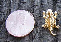 Tiny Toad Pin - 1/2""