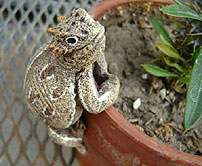 "Horny Toad Pot Hanger - 3.5"" - Click Image to Close"